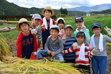 稲刈り18.10.7.2