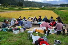 稲刈り18.10.7.3