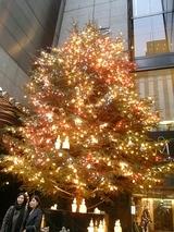 2008年クリスマス2