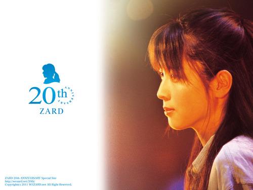 zard-40