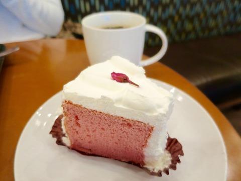 スターバックスコーヒー 春の定番「さくらシフォンケーキ」