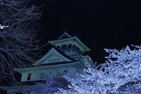 s_滋賀のええフォト☆春「豊の城と宵桜」