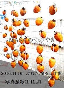 s-2016-11-22_094932