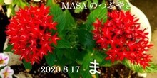 s-2020-08-17_204555