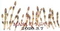 s-2020-03-07_205407