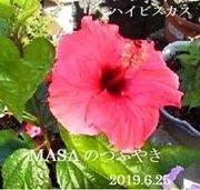 s-2019-06-25_154711