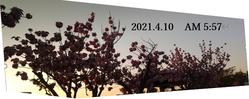 2021-04-10_093053