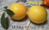 s-2019-12-06_071621