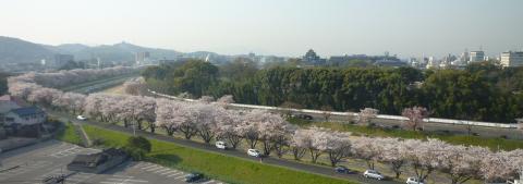 pict-P1030279後楽園と岡山城