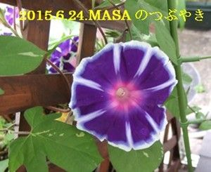 s-2015-06-24_071616