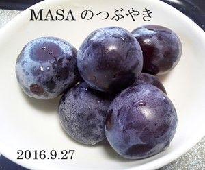 s-2016-09-27_102829