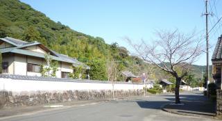 pict-P1040504武家屋敷通り(1)