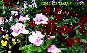s-2015-04-29_165321