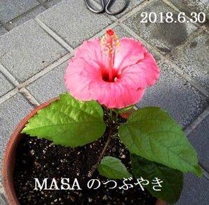 s-2018-06-30_175124