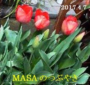 s-2017-04-07_165606