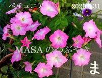 s-2020-05-31_071335A