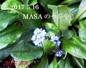 s-2017-05-16_150857