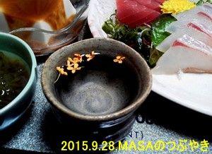 s-2015-09-29_130516