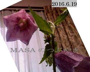 s-2016-06-20_052400