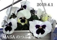 s-2019-04-02_094329