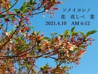 s-2021-04-10_095037