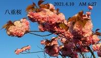 s-2021-04-10_101410