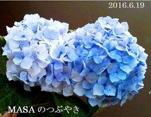 s-2016-06-20_050419