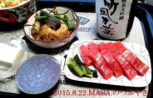 s-2015-08-22_204447