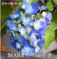 s-2018-06-08_144444