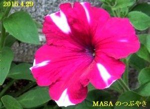 s-2015-04-29_171523