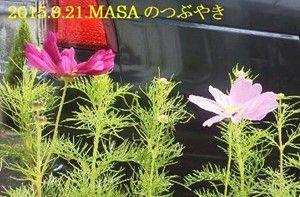 s-2015-09-21_132635