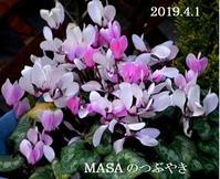 s-2019-04-02_093531