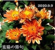 s-2020-09-10_172241