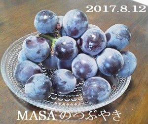 s-2017-08-16_114750