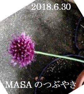s-2018-06-30_175833