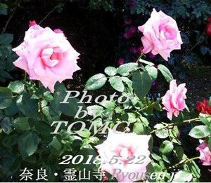 s-2018-05-24_170207