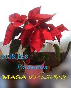s-2016-12-04_161650
