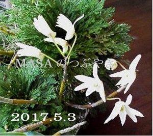 s-2017-05-03_150729