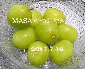s-2017-07-19_085211