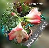 s-2020-05-22_103222