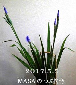 s-2017-05-05_154700