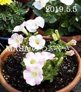 s-2019-05-06_205805