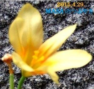 s-2015-04-29_164746