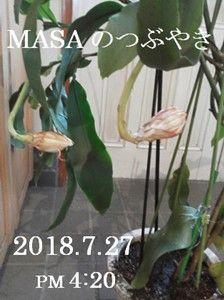 s-2018-07-27_172205
