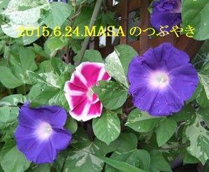 s-2015-06-24_071158