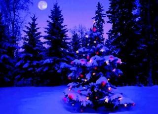 pict-pict-Christmas Saint-3