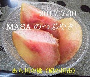 s-2017-08-01_092428