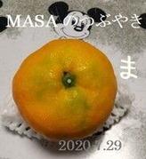 s-2020-07-29_203402
