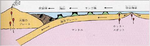 pict-付加体・美祢市立秋吉台科学博物