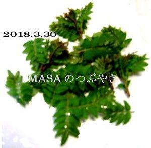 s-2018-03-31_143646